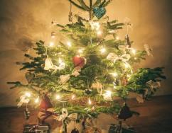 Ziemassvētku eglīte